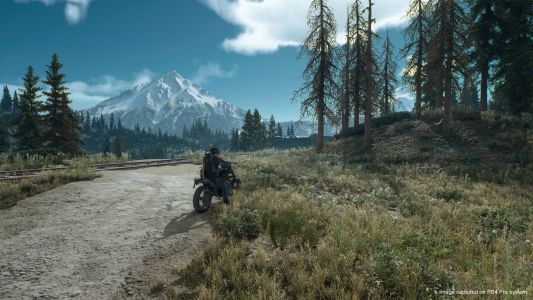 Days Gone's Entire Open World Was Designed By Just 6 People