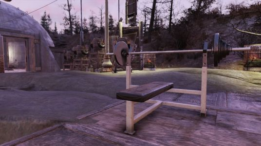 Bethesda nukes Fallout 76 weight bench Strength glitch