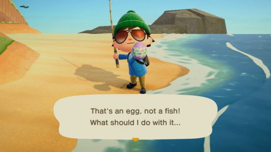 Where To Find Eggs In Animal Crossing New Horizons