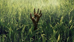 Netflix and Stephen King's In The Tall Grass Releases October