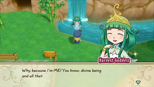 Story of Seasons: Friends of Mineral Town Harvest Goddess Guide