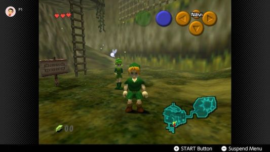 The Nintendo Switch Online Expansion Pack doesn't let you remap controls